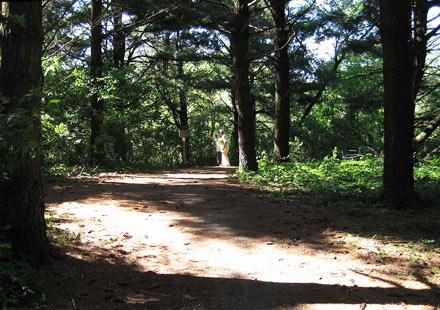 fairfield trail, fairfield loop trail