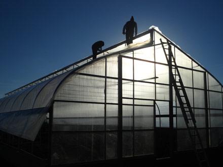 fairfield greenhouse, farm to school greenhouse, green fairfield,hometown harvest fairfield, fairfield ia